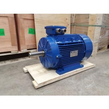 Elektrimootor 11,0kW/1000 p/min T3A 160L-6 B3; IE3; IP55; 400/690V; PTC termistorid 130℃