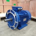 Elektrimootor 11,0kW/1500 p/min T3A 160M-4 B35; IE3; IP55; 400/690V; PTC termistorid 130℃