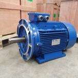 Elektrimootor 18,5kW/3000 p/min T3A 160L-2 B35; IE3; IP55; 400/690V; PTC termistorid 130℃