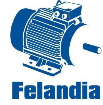 Felandia veebipood